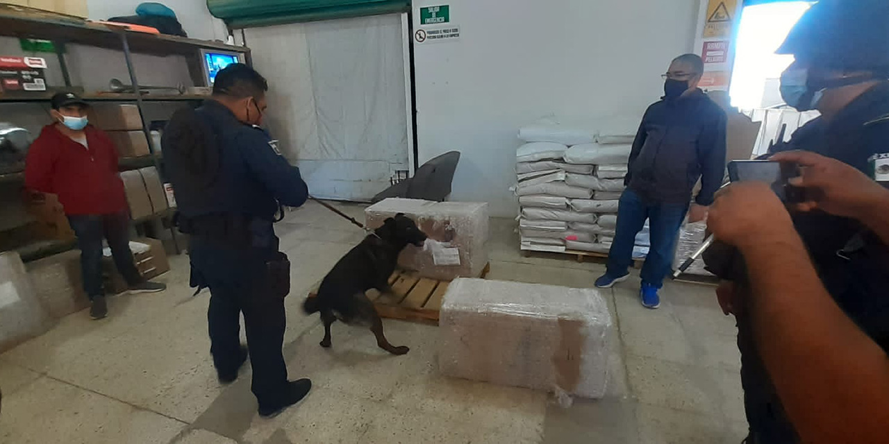 Golpe al narco en Candiani | El Imparcial de Oaxaca