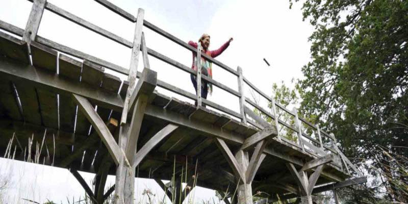 Puente emblemático de el osito Winnie Pooh se subastará en Inglaterra | El Imparcial de Oaxaca